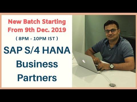SAP S/4 HANA Business Partners