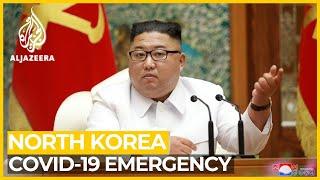 First suspected Corona case reported in North Korea, decla..