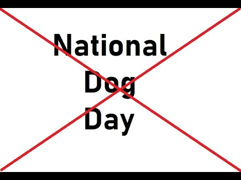 National Dog Day Special