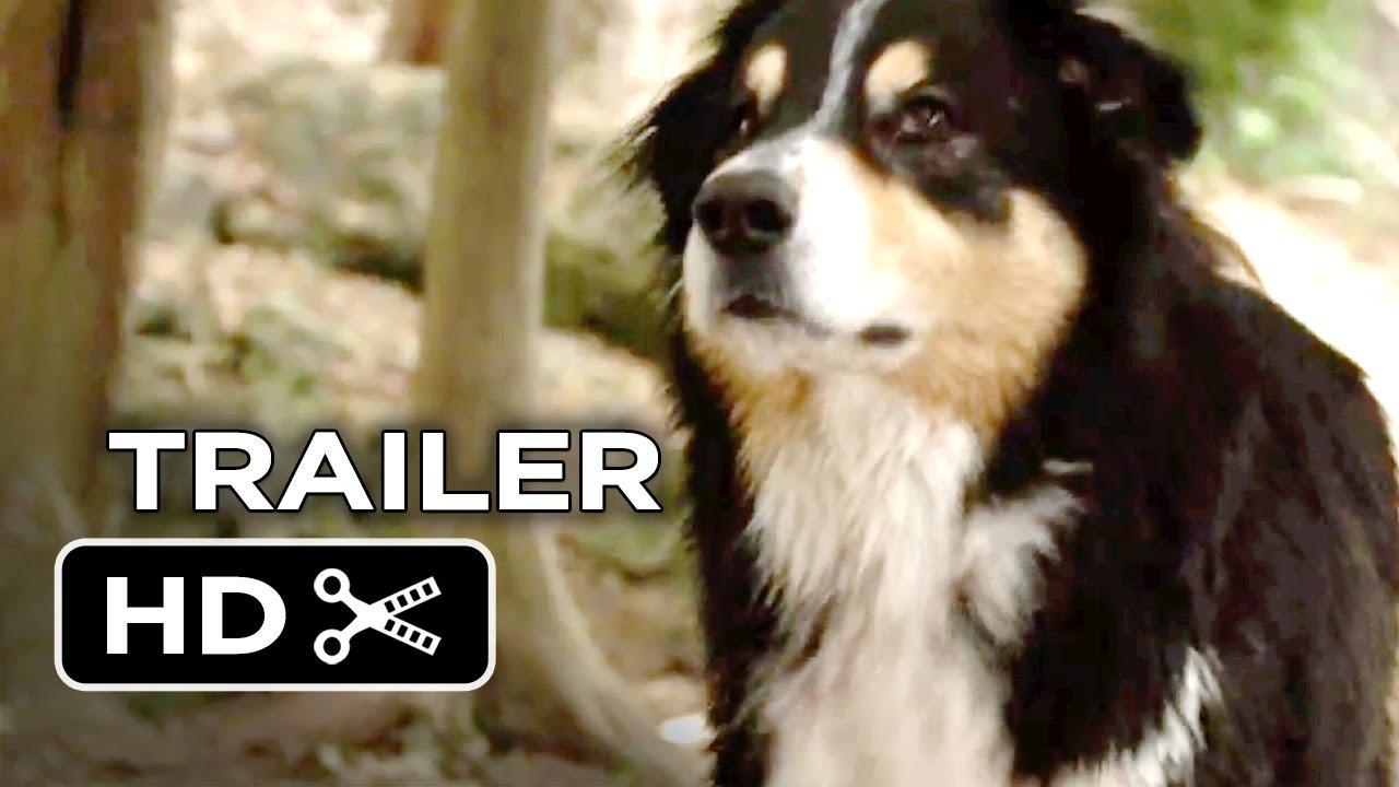 Bark Ranger (2015) Трейлър