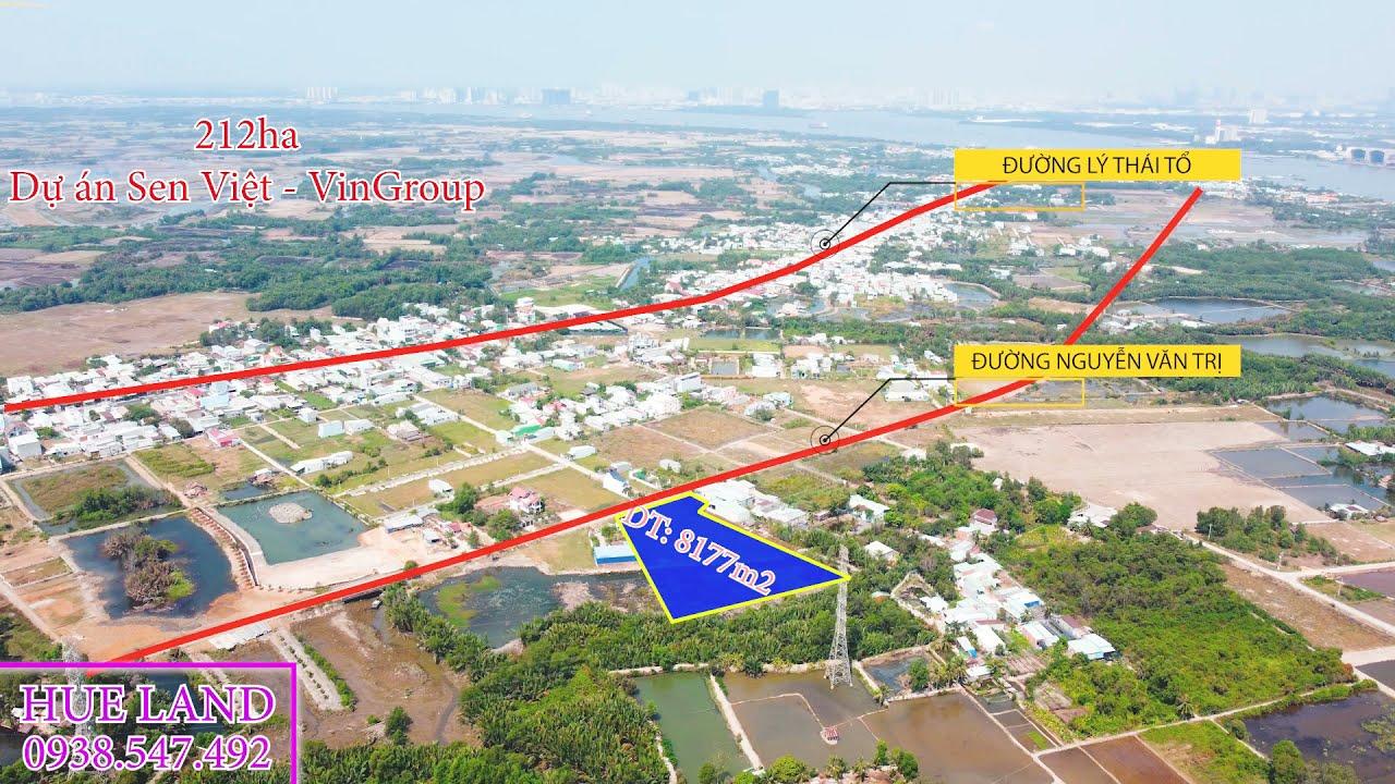 Bán đất mặt tiền đường nhựa Nguyễn Văn Trị, xã Đại Phước, cách phà Cát Lái 2,5km video