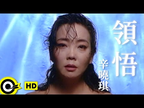 辛曉琪 Winnie Hsin【領悟 Understanding】Official Music Video