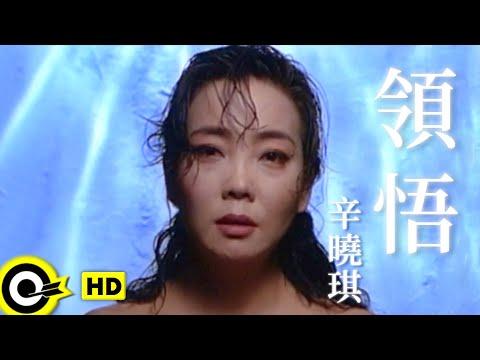 辛曉琪-領悟 (官方完整版MV)