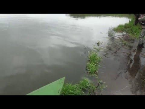 Ловля чавычи на Камчатке