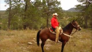 Cuartetos a caballo
