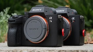 Sony a7III VS a7RIII User Experience Review - BEST Hybrid Mirrorless Cameras of 2018