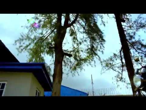 Hail My King by Obiora Obiwon Feat Frank Edwards, Eben& Kenny Kore