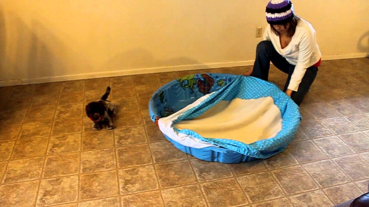 Whelping Pool Cover Mov Youtube