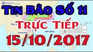 Tin Thời Sự Hôm nay (11h30 - 15 /10/2017) : Tin Bão số 11 giật cấp 15, hướng di chuyển siêu dị