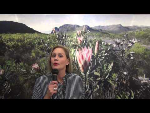 ICCA President Nine Freysen-Pretorius invites you to the new AMP