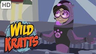 Wild Kratts - Land Animals' Super Powers   Kids Videos