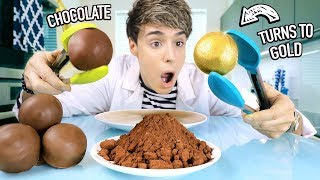 i tested SCIENCE EXPERIMENTS using food items 3