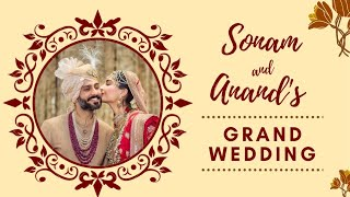 Sonam Kapoor-Anand Ahuja second marriage anniversary-Candi..