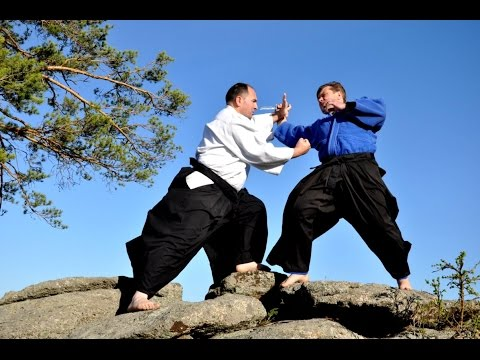 Documentary | Bratislav Stajic | International Aikido Academy | 9-th Dan