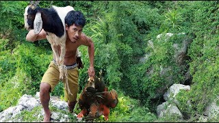 adventure in forest - Bezoar Ibex - hungry men Eating Chickens delicious