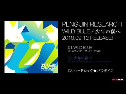 PENGUIN RESEARCH シングル「WILD BLUE/少年の僕へ」全曲ダイジェスト