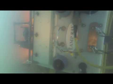 Lamp Ray® ROV Underwater HD Video