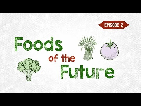 The Foods of the Future