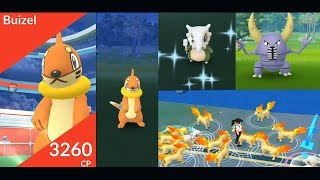 New Gen 4 Buizel, and shiny Cubone, Ponyta and more in Pokemon Go
