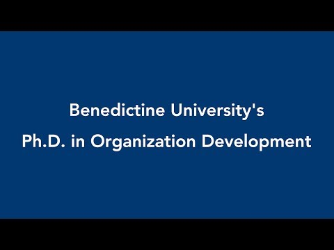 Benedictine University Organization Development students and alumni discuss the impact and advantage of earning an OD degree from Benedictine, and what it has meant to their careers.