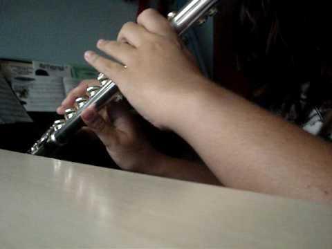 Piratas del Caribe en Flauta Travesera