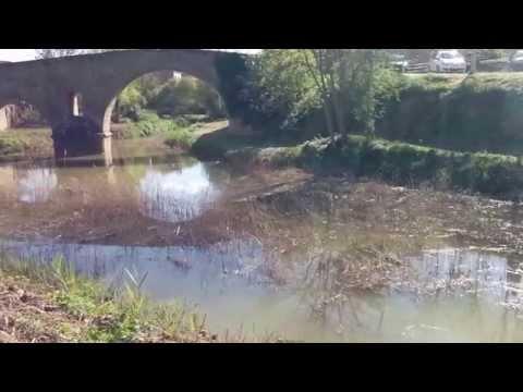 El riu Llanera a #Torà