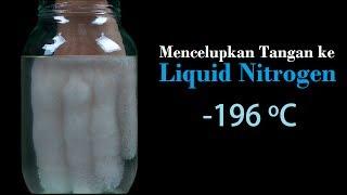 Apa yang Terjadi saat kita Memasukkan Tangan ke Cairan Nitrogen? Liquid Nitrogen Suhu -196 D Celcius