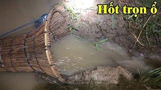 Trời mưa to ngập ruộng cá ngược nước lên đồng chặn cái đó ngang mương nước chảy hốt sạch hết cá