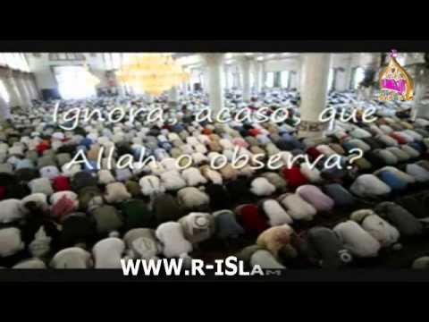 islamismo   YouTube