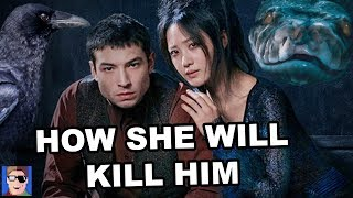 Why Credence Definitely Won't Survive   Fantastic Beasts Theory