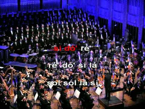 Hino da Alegria - Flauta de Bisel