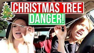 Christmas Tree Almost Slides Off The Car! | Vlogmas Day 8!