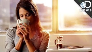 Why It's Better To Be A Morning Person