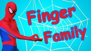 Finger Family Superheroes & Five Little Ducks  Songs - Nursery Rhymes for Kids  - BiBu TV