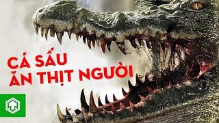 Top 5 Phim Về Cá Sấu Ghê Rợn Không Kém Gì Địa Đạo Cá Sấu Tử Thần   Ten Tickers