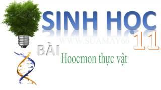 Sinh hoc lớp 11,  Bài 35 , Hoocmon thực vật, thuan mai, on thi