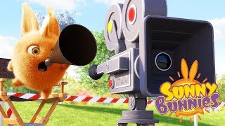 Cartoons for Children | SUNNY BUNNIES - THE DIRECTOR | Funny Cartoons For Children