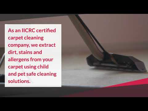 Reliable & Quality Carpet Cleaning Services In Alpine