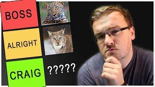 THE CAT TIER LIST