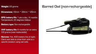 Watch video - GPS Data Logger for Barred Owl without rechargeable battery