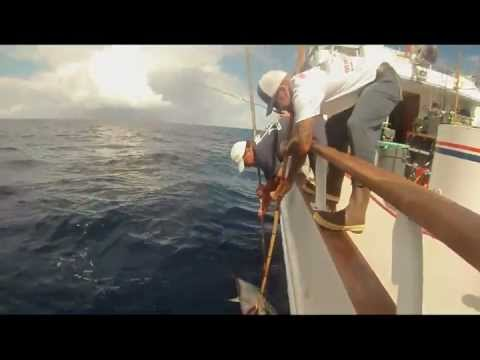 123 lb Blue Fin Tuna on the Polaris Supreme - filmed by Bryceless