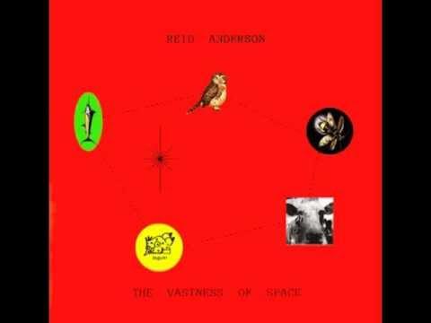 Reid Anderson - The Owl online metal music video by REID ANDERSON