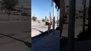 """Abaten a """"El Toro"""" y """"Pancho Carreòn"""" del Cartel del Golfo en Tamaulipas"""