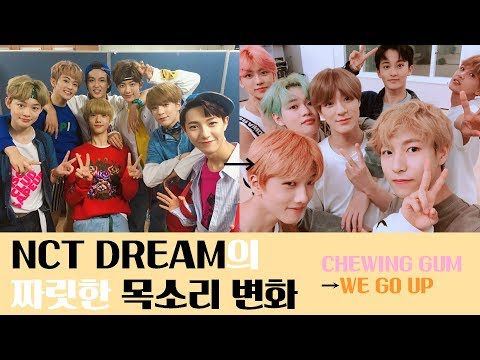 NCT DREAM의 짜릿한 목소리 변화 (Chewing Gum → We Go Up)