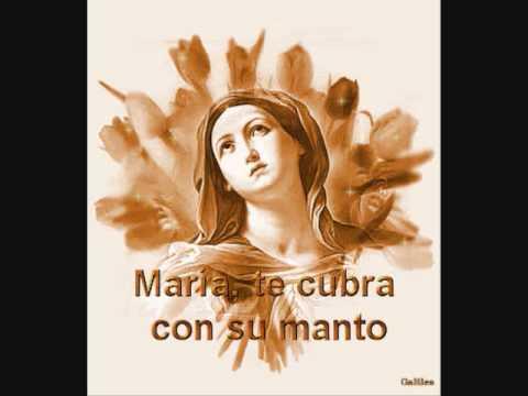 JUNTO A TI MARIA.w