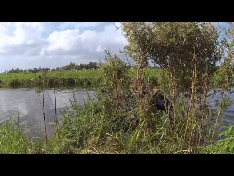 Muskusrattenbestrijding in Nederland – Onze dijken heel houden