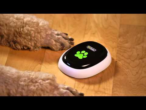 "Has your pet called you lately? Your dog or cat will soon be able to do just that with the forthcoming launch of the PetChatz(R) HD PawCall(TM) accessory, a landmark technology that lets pets initiate two-way video chats with the press of a button placed on your household's floor.  PawCall will connect with PetChatz HD, a ""Greet & Treat(R)"" videophone allowing pet parents to connect with their pets from anywhere, anytime through their smartphones, tablets or computers. PetChatz HD features an HD, low-light camera and a high quality audio system. Learn more at www.PetChatz.com."