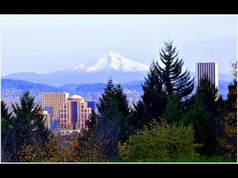 Dial One Roofing 503 224 7663 Roofing Portland Oregon
