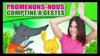 Promenons-nous dans les bois - Comptines à gestes pour bébés - Titounis