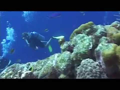 Scuba Diving at Halfmoon Caye in Belize